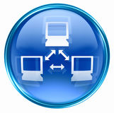 Network icon blue Royalty Free Stock Photo
