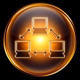 Network icon golden Stock Photos