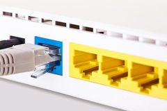 Network interface. The network interface of modem/switch/router Royalty Free Stock Images