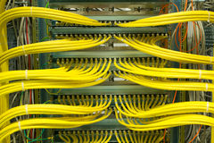 Network LAN patch panel Royalty Free Stock Image