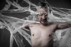 Network.man tangled in huge white spider web Stock Photos