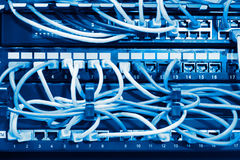 Network panel, switch and cable in blue tone Royalty Free Stock Photos