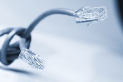 Network  and patch cables Stock Photography