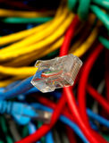 Network Plug Royalty Free Stock Photo