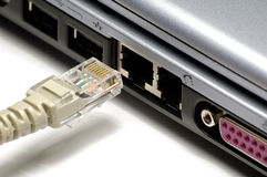 Network plug Stock Image