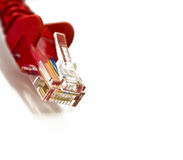 Network plug on white. Red RJ45 Network plug on white background Royalty Free Stock Photo