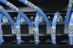 Network and patch cord cable in data cente.selective focus shot. Network port and patch cord cable in data cente.selective focus shot stock images