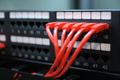 Network ports and wires. Royalty Free Stock Photos