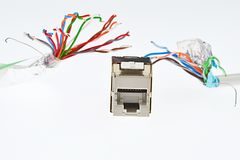 Network RJ45 female socket is chased by two UTP/STP cables that looks like tentacles of a monster, white background. Artificial light royalty free stock image