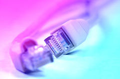 Network rj45 plugin Stock Images