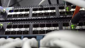 Network stack. Network activity on switch. Indication of operation of the network equipment. Concept 3.0 stock footage