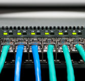 Network Switch. Close up of a network switch with green link-lights flashing Royalty Free Stock Images