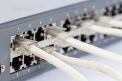 Network switch and ethernet cables Stock Photos