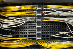 Network switch and ethernet cables. Network cables connected to switches Stock Image