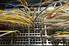 Network switch and ethernet cables. Network cables connected to switches Stock Images