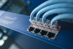 Network Switch with network cables. In the rack Royalty Free Stock Image
