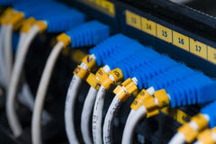 Network switch and UTP ethernet cables Stock Images
