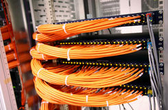 Free Network Switches Stock Photo - 892640