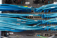 Network. UTP and lightwave connectors in a network rack Royalty Free Stock Images