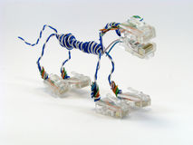 Networker primitive. Make from RJ45 and old lan cable. Something like a NET dog Stock Image