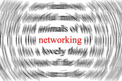 Networking concept. The focus is only on the word networking , in red. Other words are blurry Stock Image