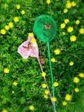 Netz auf dem Rasen Stockfoto