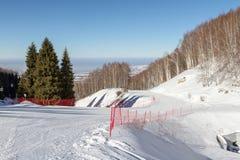 Netz auf der Gabelung des Skis neigt sich Stockfoto