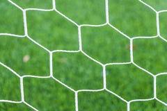Netz auf grünem Gras Stockbild