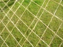 Netz gegen das Gras Lizenzfreies Stockbild
