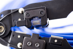 Netz-Hardware, utp Kabel und rj45 Lizenzfreie Stockbilder