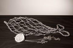 Netz mit der Form von Fischen Lizenzfreies Stockbild