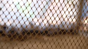 Netze auf unscharfem Hintergrund lizenzfreie stockbilder