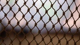 Netze auf unscharfem Hintergrund stockfotografie