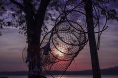 Netze eines Fisches auf See lizenzfreies stockbild