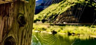 Netze Weve Unweaved Stockfotografie