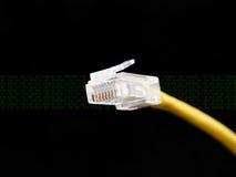 Netzkabel Stockbilder