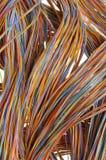 Netzkabel, Drähte in der Telekommunikation lizenzfreies stockfoto