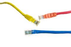 Netzkabel mit Isolat RJ45 Stockfoto