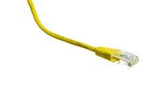 Netzkabel mit Isolat RJ45 lizenzfreie stockfotos