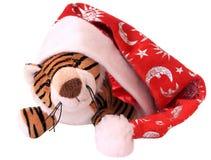Neu-Jahr Tigerjunges. Stockfotografie