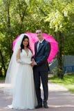 Neu-verheiratete Paare Stockfotografie
