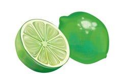 Neue Abbildung der Zitrone Stockfotografie