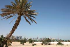 Neue Doha-Skyline stockbild