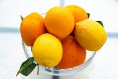 Neue Ernte von geschmackvollen organischen Orangen und von Zitronen, Zitrusfr?chte in der Glassch?ssel lizenzfreie stockbilder