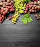Neue Ernte von roten und grünen Trauben Lizenzfreie Stockfotos