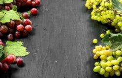 Neue Ernte von roten und grünen Trauben Lizenzfreies Stockbild