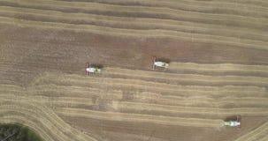 Neue Erntemaschinen der oberen Ansicht erfasst reifes Getreide auf dem großen Gebiet stock video