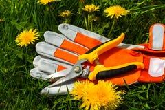 Neue Gartenscheren Lizenzfreie Stockfotografie
