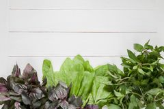 Neue Grüns auf einem weißen Hintergrund Lizenzfreies Stockfoto