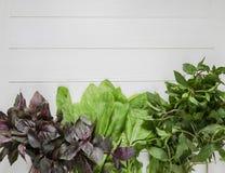Neue Grüns auf einem weißen Hintergrund Lizenzfreie Stockfotografie